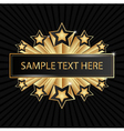Beautiful golden banner with shining stars vector image