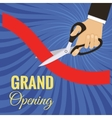grand opening card vector image