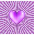 glassy violet heart vector image