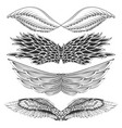 tattoo art design of different gothic wing vector image