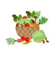 vegetables basket vector image