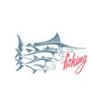 marlin tuna caranx vector image vector image