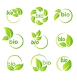 Set of green leaves bio symbol design elements vector image