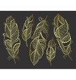 Zentangle hand drawn gold stylized feathers vector image