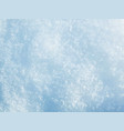 Snow texture background vector image
