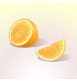 orange fruit with a slice vector image vector image