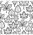 Leaves pattern on white background vector image
