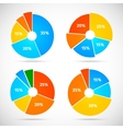 Pie Chart Icons Flat vector image