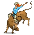 Cowgirl riding a bull Isolated vector image