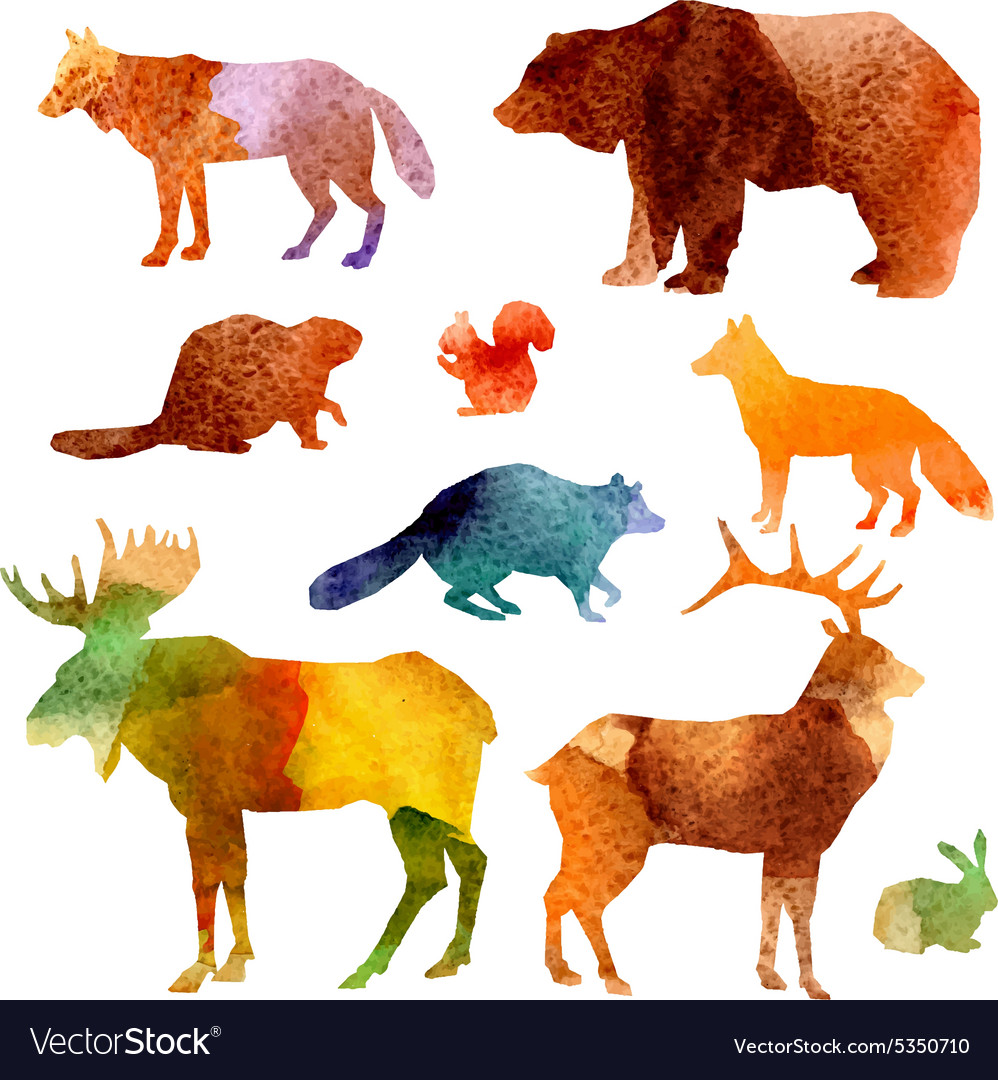 Watercolor animals set vector
