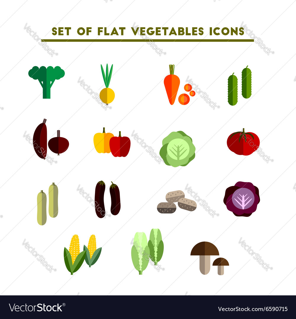 Set of color flat icon vegetable vector