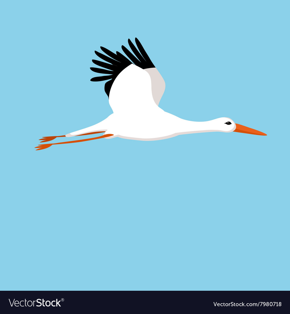Flying stork on a blue background vector