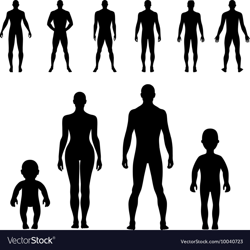 Human silhouette vector