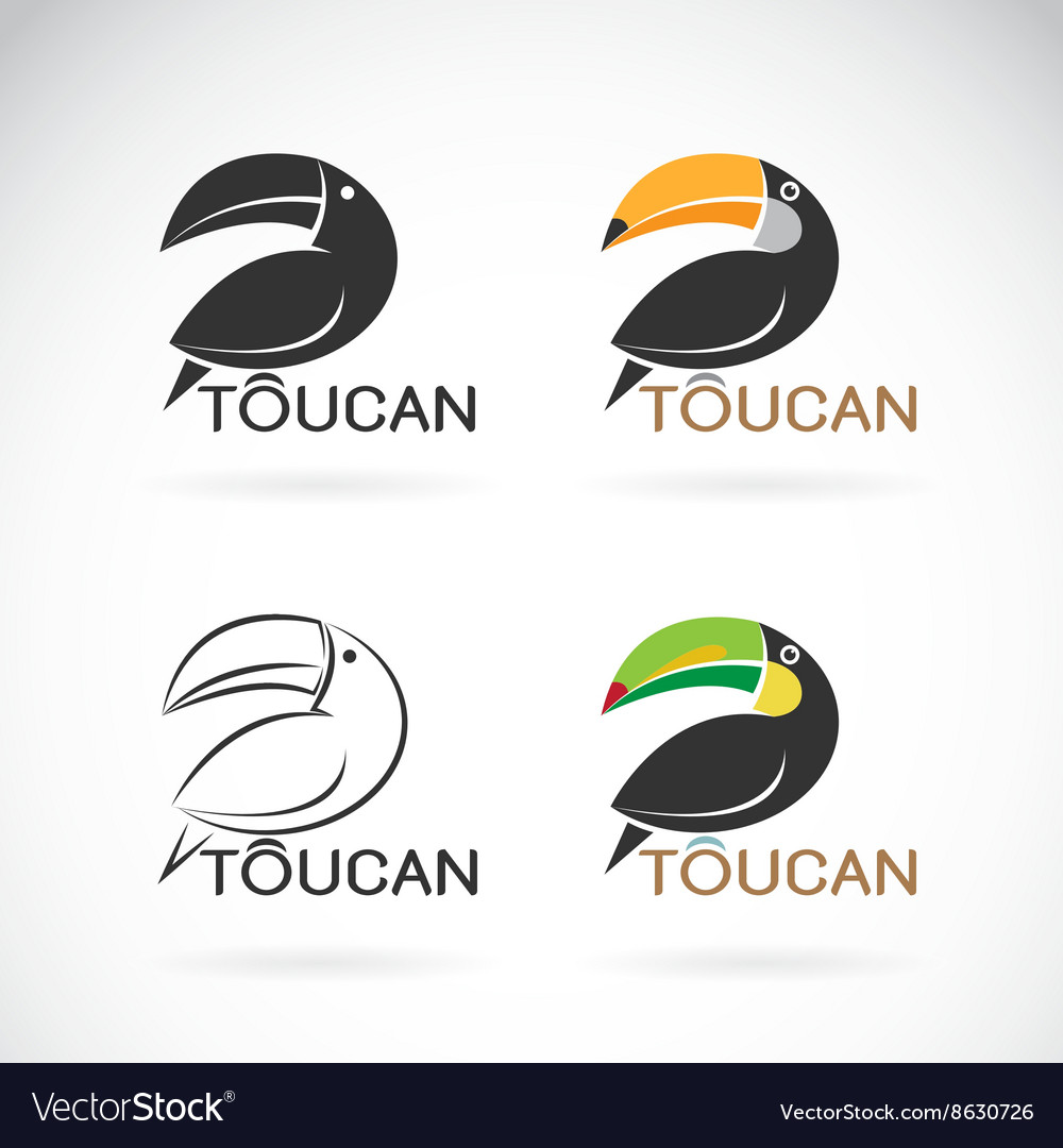 Image of an toucan bird design vector