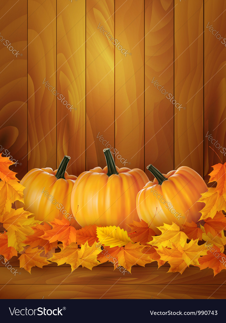 Background with three pumpkins and colorful leaves vector