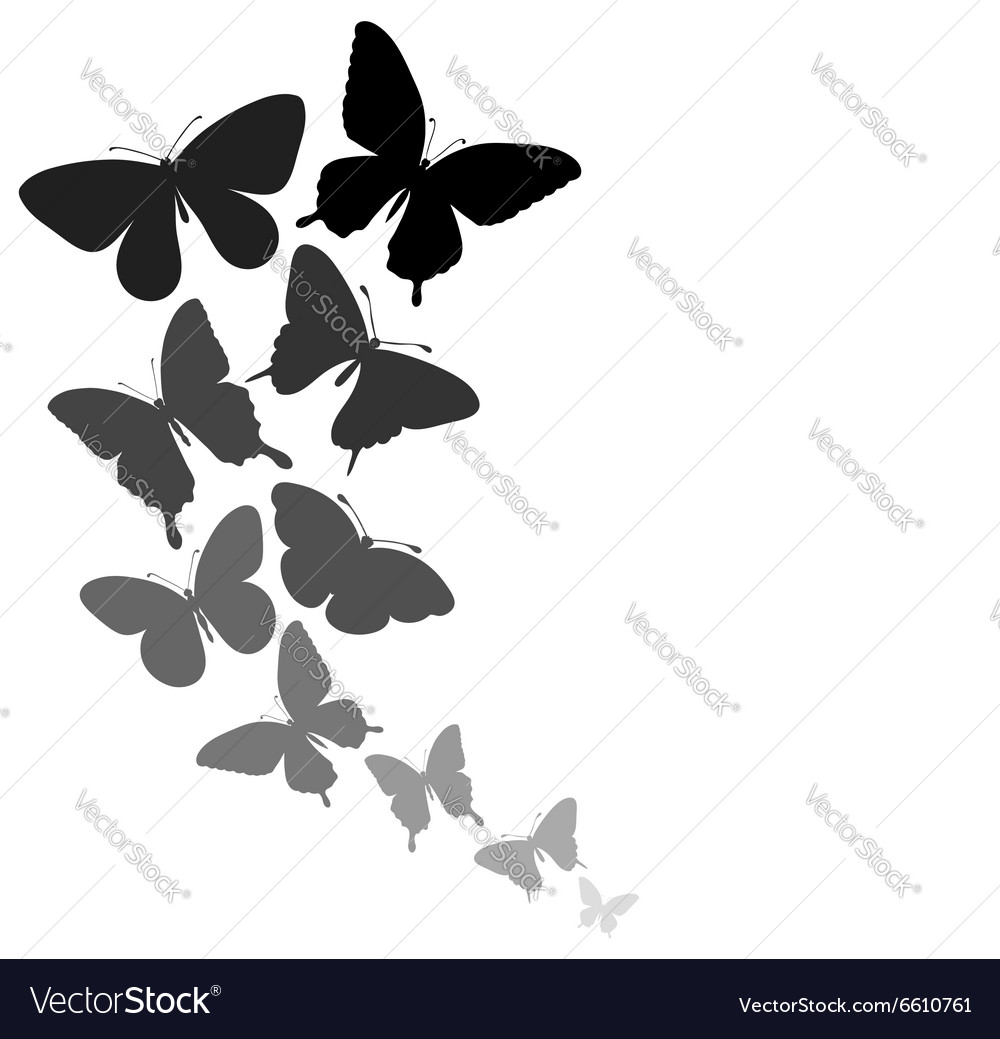 Background with a border of butterflies flying vector