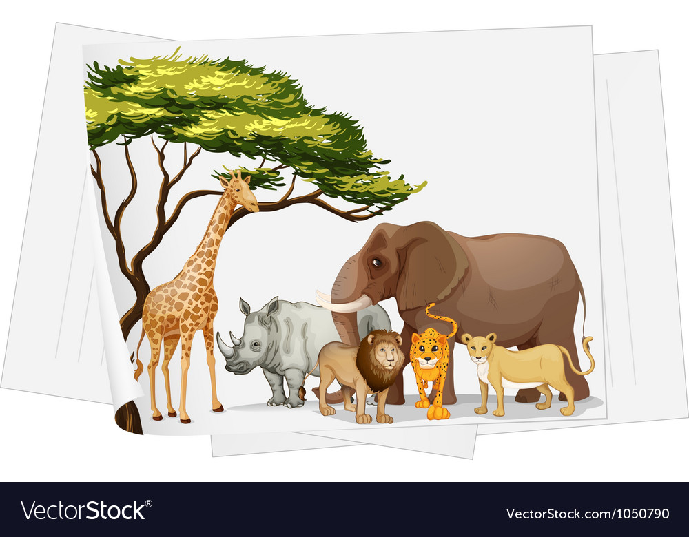 Animals in jungle on paper vector