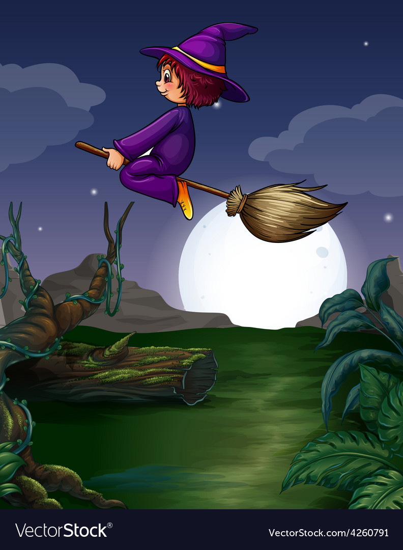 Witch flying vector