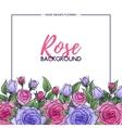 Flower rose background vector image vector image