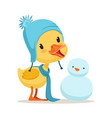 little yellow duck chick wearing blue knitted hat vector image vector image