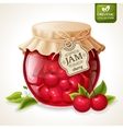 Cherry jam jar vector image