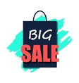 Big sale poster flat icon vector image
