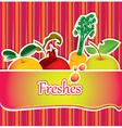 Freshes background vector image