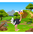 funny ostrich cartoon with mountain cliff vector image