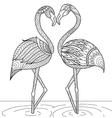 flamingo coloring vector image