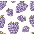 hand drawn seamless pattern with blackberry vector image