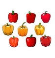 Red and yellow bell peppers vegetables vector image