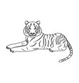 tiger a predatory animal the belgian tiger a vector image