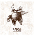 digital detailed apple hand drawn vector image vector image