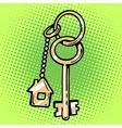 keychain house keys vector image