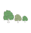 The trees line the street vector image vector image
