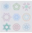 Color natural curl ornament seasoning vector image
