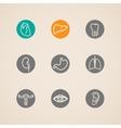 human organ icons set vector image