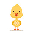 sweet yellow duckling emoji cartoon character vector image