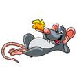 cartoon rat and cheese vector image