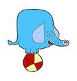 comic cartoon circus elephant vector image
