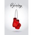 boxing sport design vector image