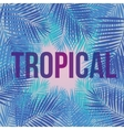 Text Tropical on a background of palm leaves vector image vector image