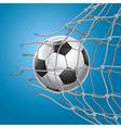 Soccer Goal vector image vector image