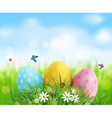 Easter eggs in green grass with white flowers vector image