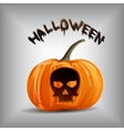 pumpkin portrait with skull for Halloween vector image