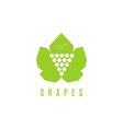 Grapes logo winemaking mark bunch of grapes on a vector image