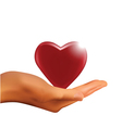 hand holding heart vector image vector image