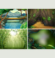 four different forest scenes vector image vector image