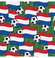 holland football pattern vector image
