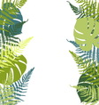 Fern and monstera background vector image